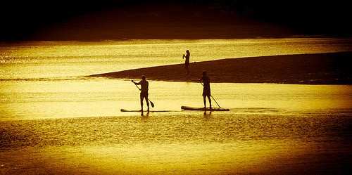 Paddle Board Rentals Mid Atlantic