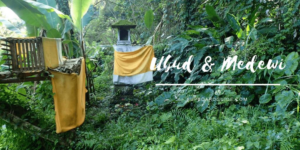Travel Blog Ubud & Medewi Bali