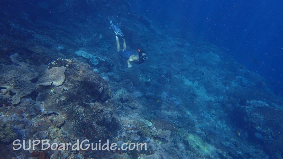 SUPBoardGuide Snorkeling