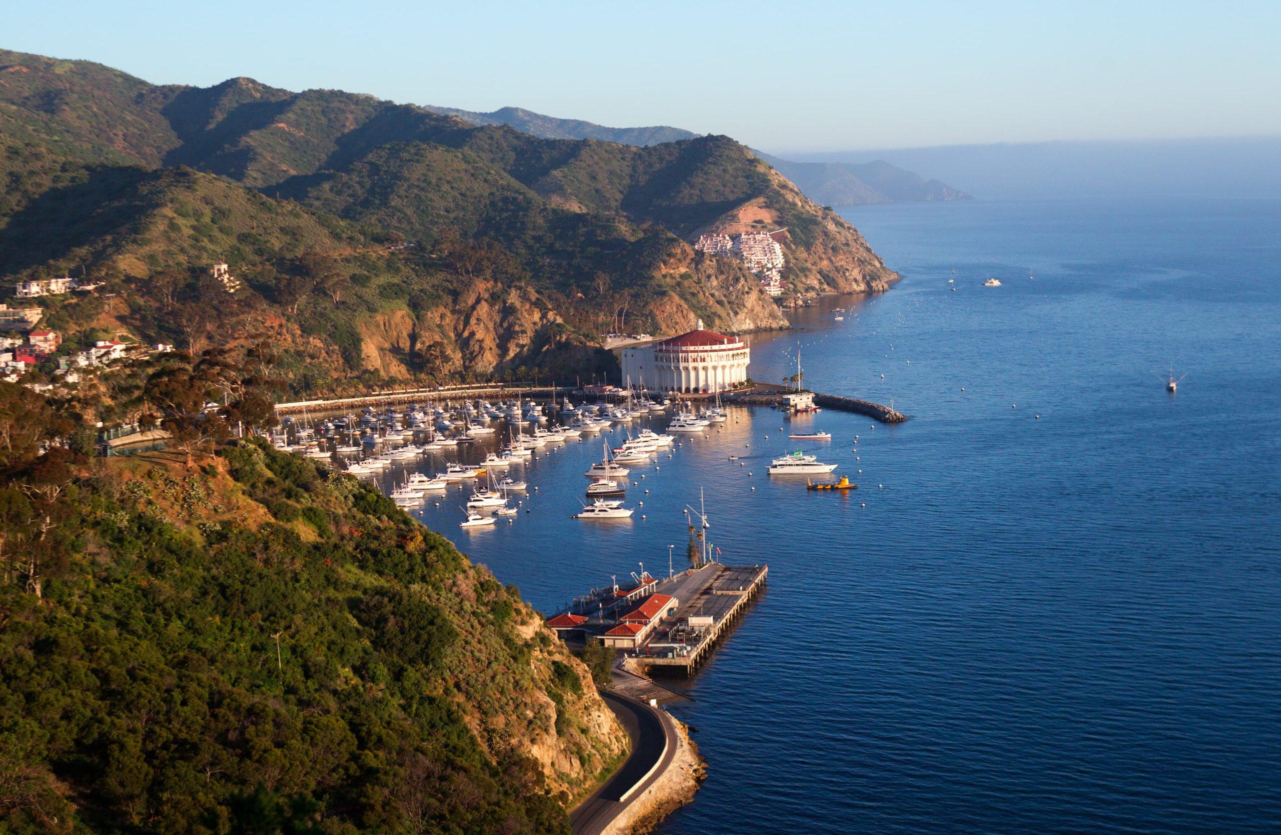 Catalina Island Paddleboard