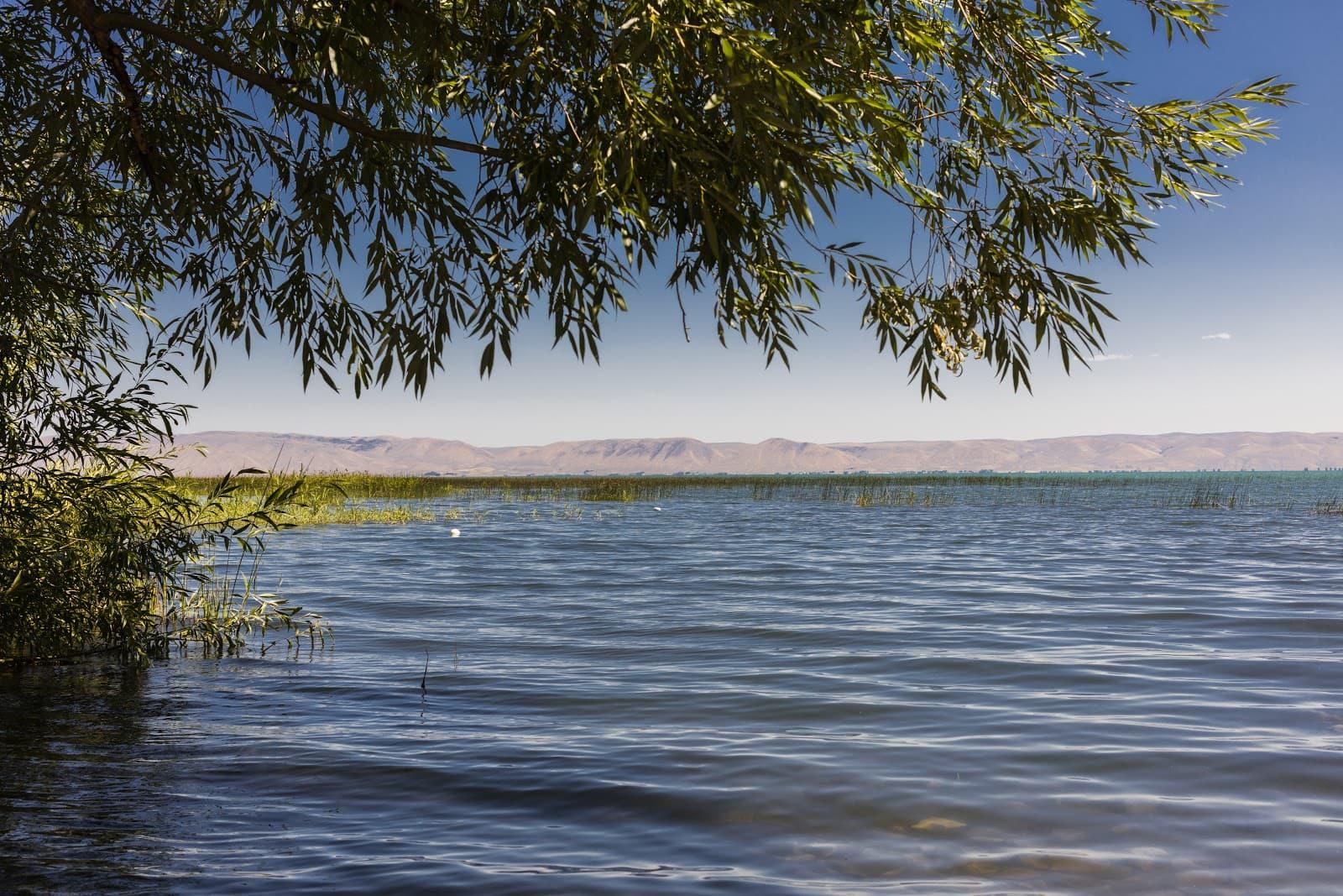 Bear Lake SUP