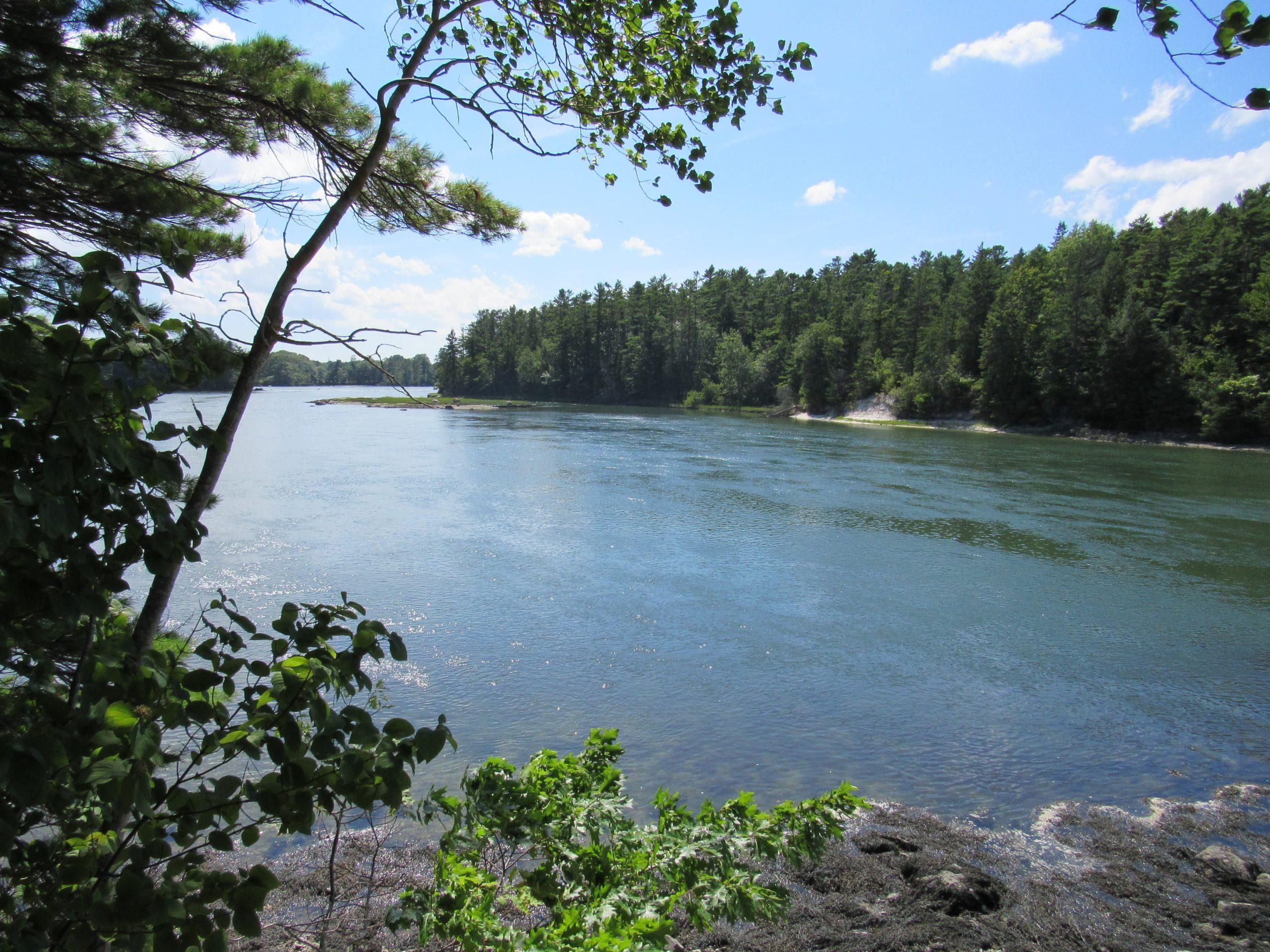 Damariscotta River SU