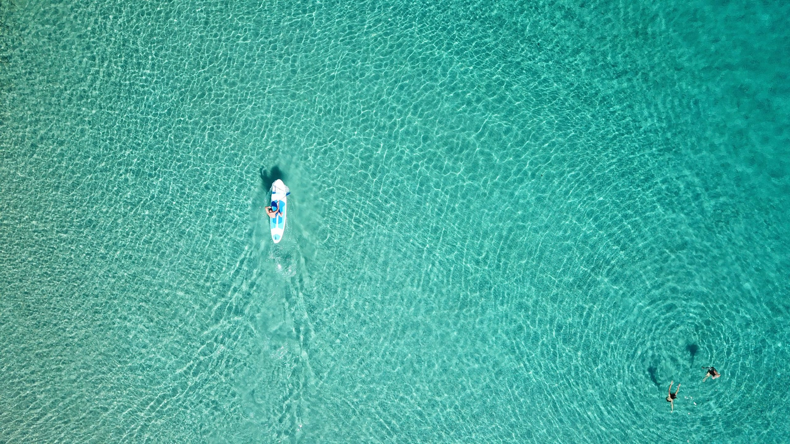 Hawaii Paddleboard