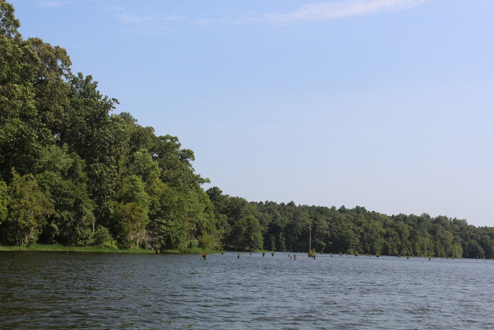Lake Buhlow SUP