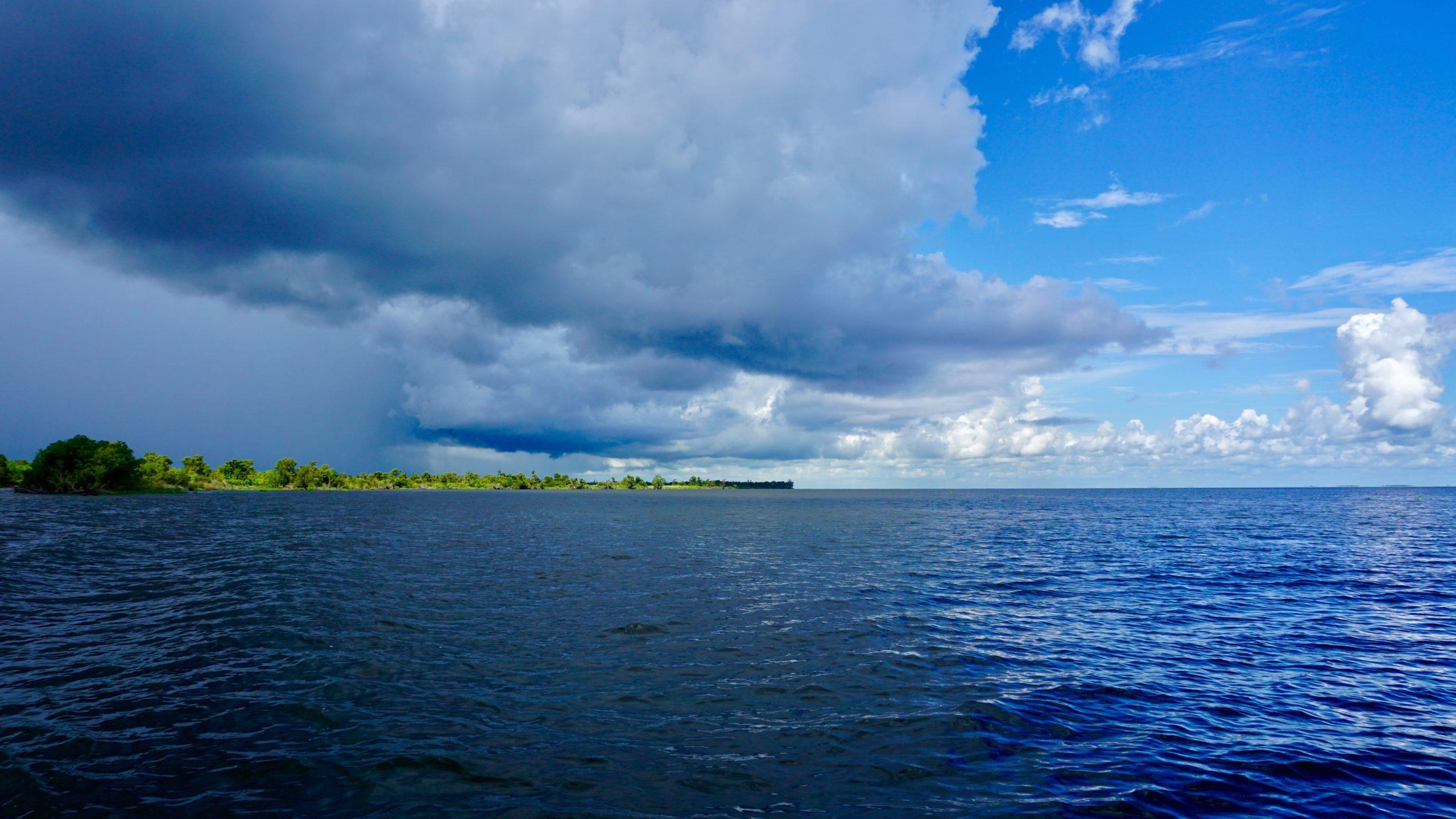 Lake Salvador SUP