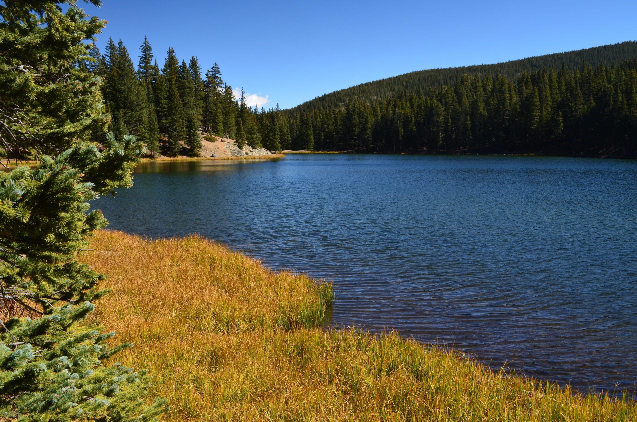 Lake Sumner SUP