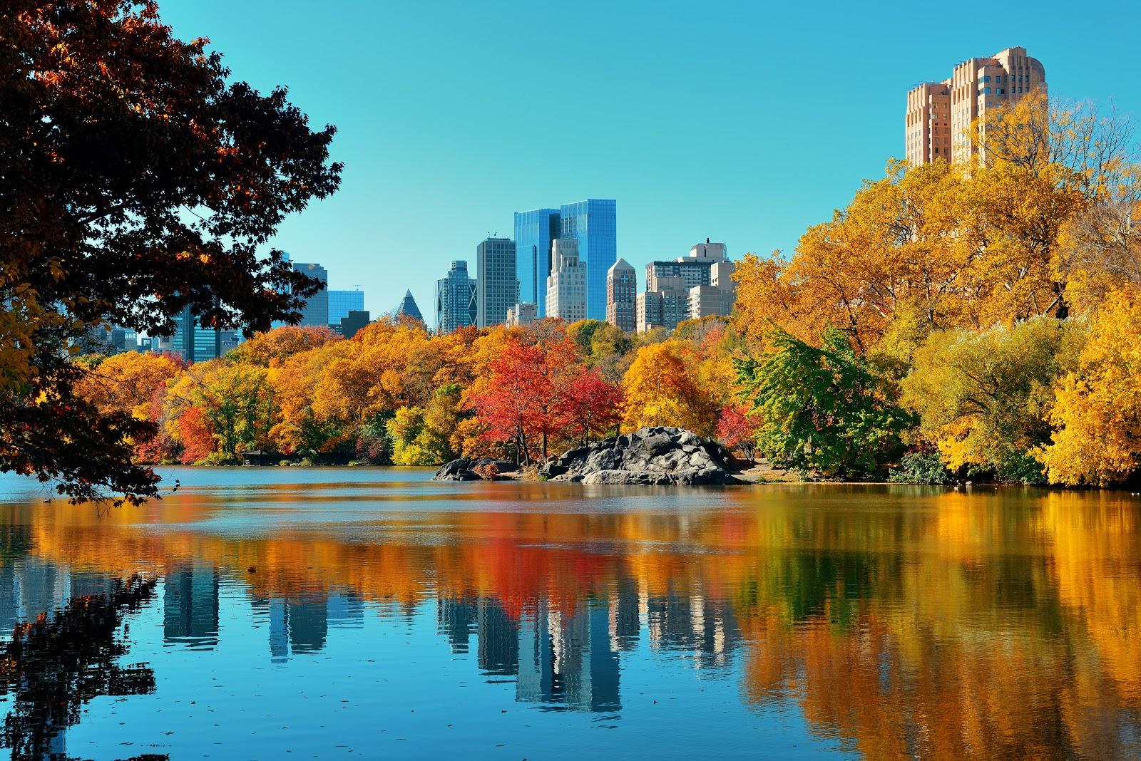 New York SUP