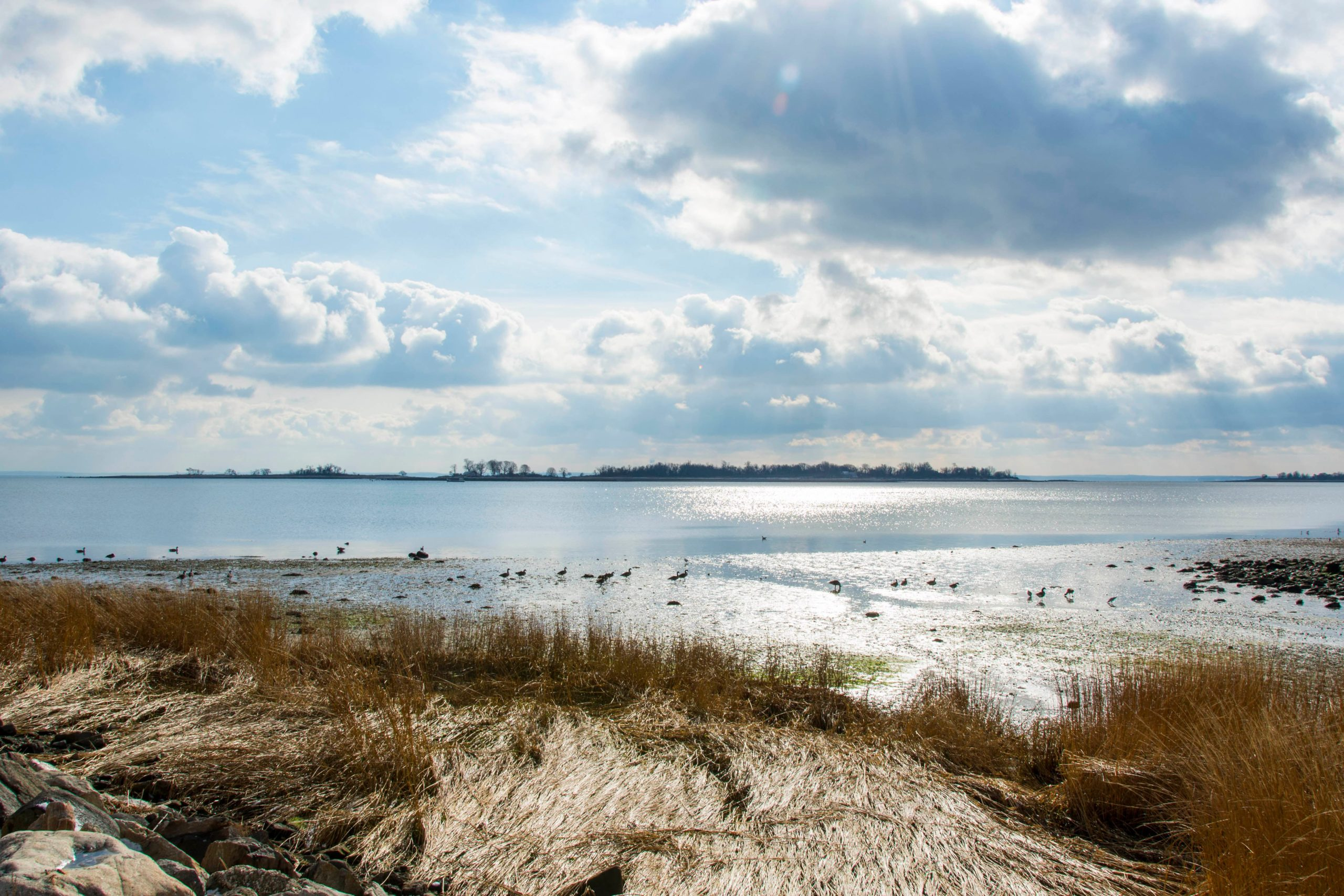 Norwalk Islands Paddleboard
